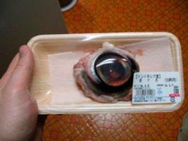 Ojo de atún
