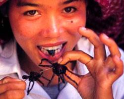 Chica comiendo arañas fritas