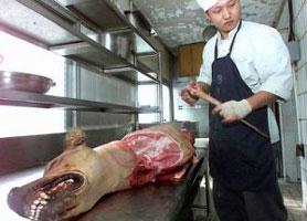 Perro en la carnicería